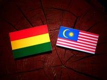 Boliwijki flaga z malezyjczyk flaga na drzewnym fiszorku odizolowywającym zdjęcie stock