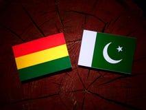 Boliwijki flaga z Pakistan flaga na drzewnym fiszorku odizolowywającym obrazy royalty free