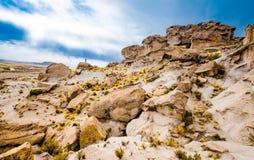 Boliwijski góra krajobraz fotografia royalty free