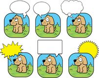 Bolla del cane Fotografia Stock Libera da Diritti