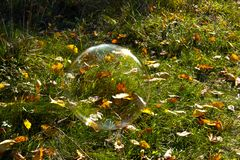 Bolla di sapone sull'erba fotografia stock libera da diritti