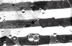 Bolle astratte dell'acqua e del petrolio Fotografia Stock