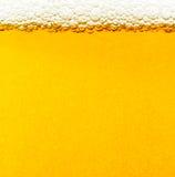 Bolle della birra. Fotografie Stock