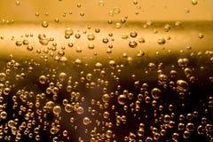 Bolle della birra Immagini Stock Libere da Diritti