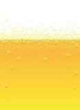 Bolle della birra Immagine Stock