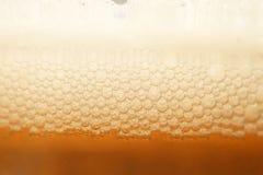 Bolle della birra nella macro Fotografia Stock Libera da Diritti