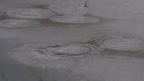 Bolle lente in vasi di pittura video d archivio