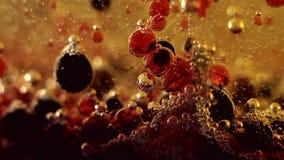 Bolle nell'estratto variopinto liquido archivi video