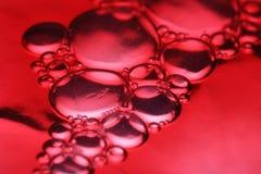 Bolle rosse a macroistruzione Fotografie Stock