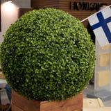 Bollen av mossa och den Finland flaggan Royaltyfria Bilder