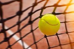 bollen förtjänar tennis Royaltyfria Foton