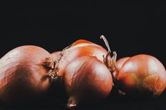 Bollen van wortels op een zwarte achtergrond, geïsoleerde sappig royalty-vrije stock foto