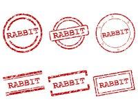 Bolli del coniglio Immagine Stock Libera da Diritti