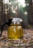 Bollitore con tè su un picnic Fotografia Stock Libera da Diritti