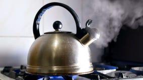 Bollitore di tè caldo della tazza stock footage