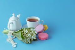 Bollitore e tazze con i fiori della molla Fotografie Stock