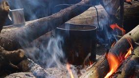 Bollitore su fuoco di accampamento alla foresta stock footage