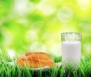 Bollo de canela y vidrio frescos de leche en el CCB de la naturaleza imágenes de archivo libres de regalías