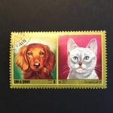 Bollo del gatto e del cane Fotografia Stock