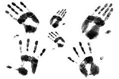 Bollo della palma della famiglia Immagini Stock Libere da Diritti