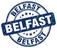 Bollo di Belfast Immagine Stock
