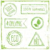 Bollo floreale della raccolta della pagina di ECO Fotografie Stock Libere da Diritti