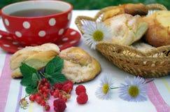 Bollos con té Fotografía de archivo libre de regalías