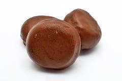 Bollos del chocolate Fotografía de archivo