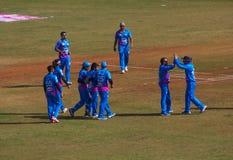 Bollywood Cricket 9 Royalty Free Stock Photo