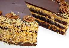 Bolo caseiro da avelã do chocolate Imagem de Stock Royalty Free