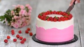 Bolo com creme cor-de-rosa chicoteado, a framboesa fresca e a hortelã video estoque