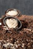 Bolo com ingredientes do chocolate perto acima fotografia de stock royalty free
