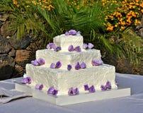 Bolo de casamento com rosas Fotografia de Stock Royalty Free