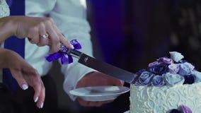 Bolo de casamento da estaca da noiva e do noivo vídeos de arquivo