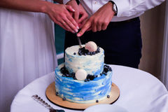 Bolo de casamento de creme azul de dois níveis decorado com mirtilos e macarons Recém-casados felizes que cortam o bolo de casame imagens de stock