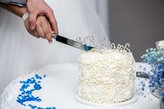 bolo de casamento do corte Fotografia de Stock