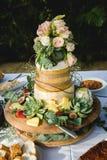 Bolo de casamento do queijo Foto de Stock Royalty Free