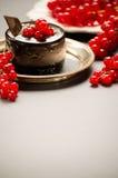 Bolo de chocolate com bagas vermelhas em um prato Imagem de Stock