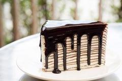 Bolo de chocolate com creme da camada foto de stock