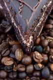Bolo de chocolate com feijões de café Imagens de Stock Royalty Free