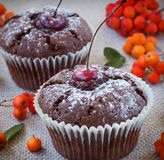 Bolo de chocolate com uma cereja vermelha Fotos de Stock