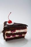 Bolo de chocolate delicioso imagens de stock royalty free