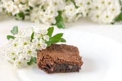 Bolo de chocolate delicioso em uma placa branca em uma tabela branca Pastelarias caseiros Torta americana tradicional Copie o esp imagens de stock