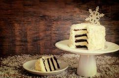 Bolo de chocolate do coco com queijo creme Fotos de Stock