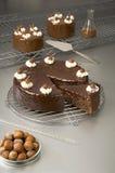 Bolo de chocolate - série da química de alimento Fotografia de Stock