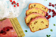 Bolo de frutas festivo macio com as passas e os arandos secados, decorados com crosta de gelo do açúcar Fotografia de Stock Royalty Free