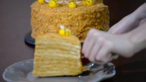 Bolo de mel mergulhado home doce Põe uma parte de bolo de mel em uma placa video estoque