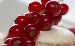 bolo de Ow-caloria com corintos vermelhos, mirtilos e framboesas Imagens de Stock Royalty Free