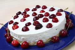 Bolo de queijo com cerejas frescas Fotografia de Stock