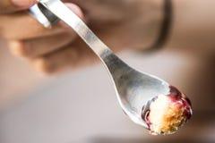 Bolo de queijo de Blueberrry no fim da colher acima do tiro macro fotos de stock
